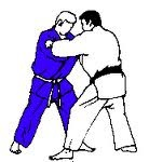 judoka's, plaatje