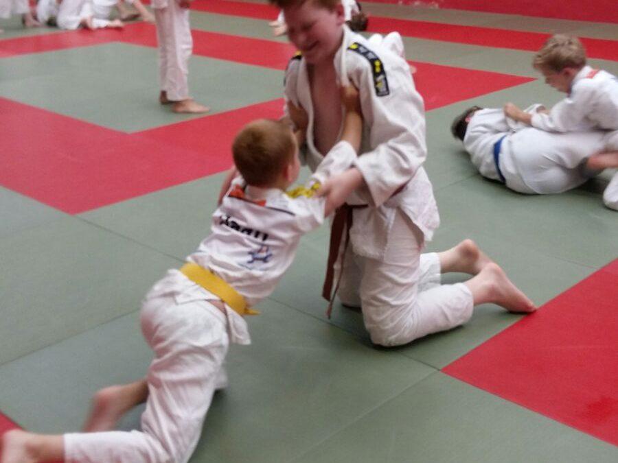 Mooie afsluiting judoseizoen met Husseltraining