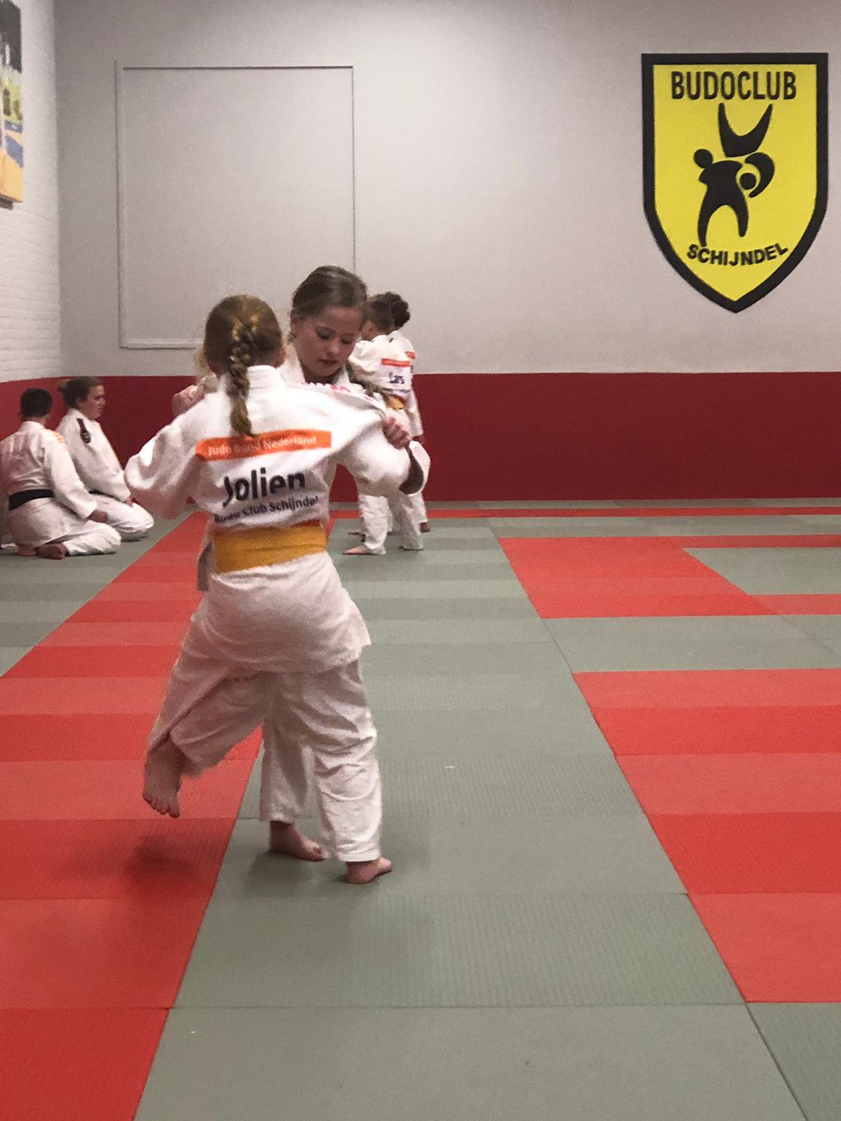 Judoka's groep 3 allemaal geslaagd !
