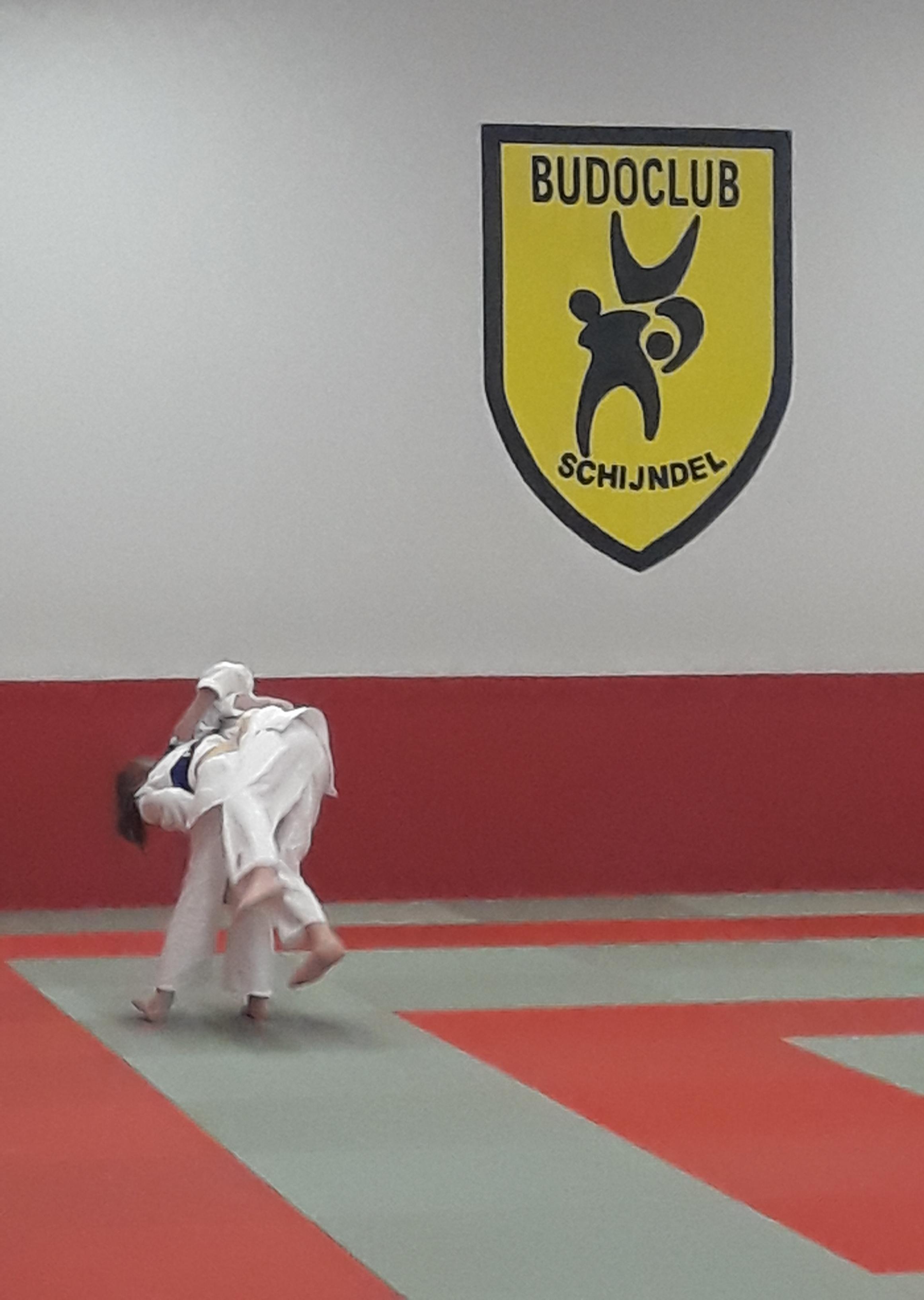Allemaal geslaagd in judogroep 4
